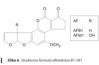mikotoksini- aflatoksin AB1 i AM1